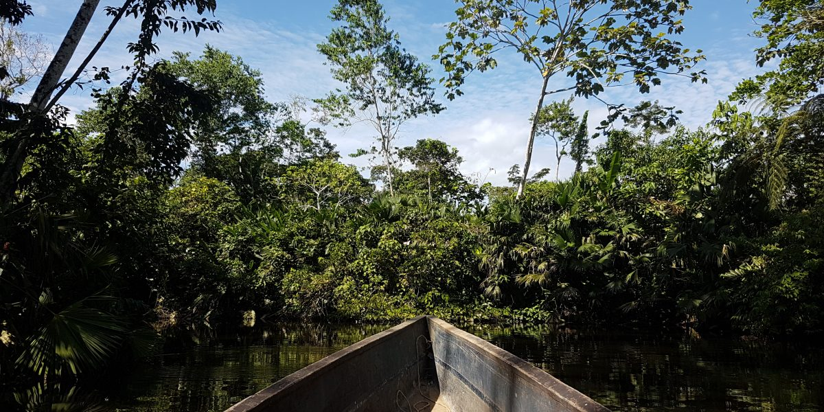 A wie Amazonas. A wie Abenteuer.
